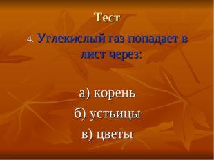 Тест 4. Углекислый газ попадает в лист через: а) корень б) устьицы в) цветы