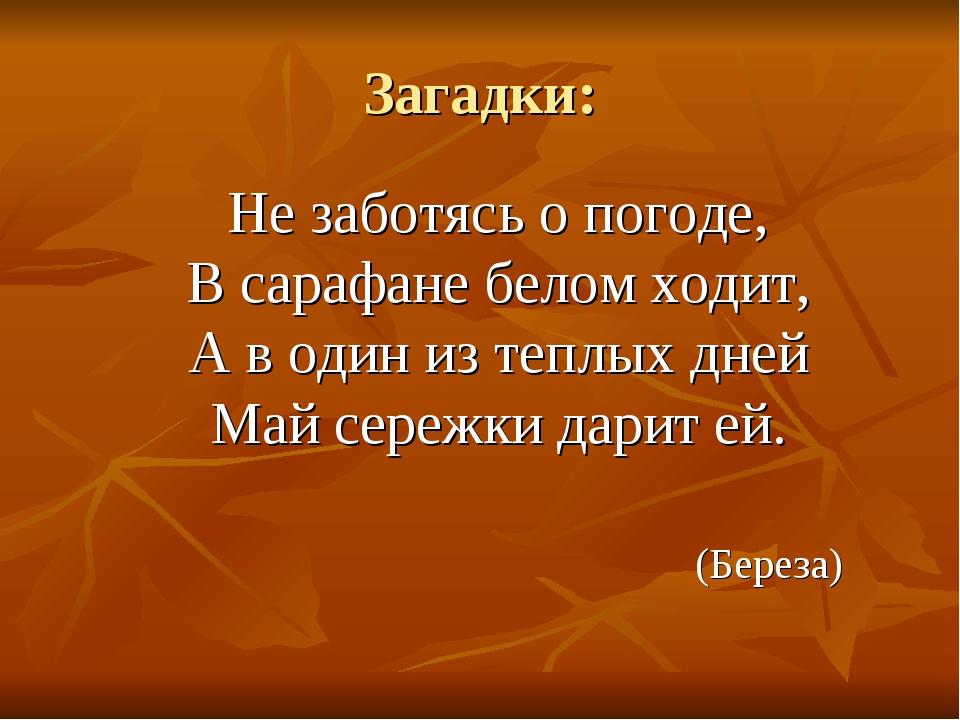 Загадки: Не заботясь о погоде, В сарафане белом ходит, А в один из теплых дн...