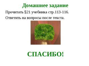Домашнее задание Прочитать §21 учебника стр.113-116. Ответить на вопросы пос