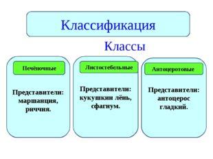 Классы Классификация Представители: маршанция, риччия. Представители: кукушк
