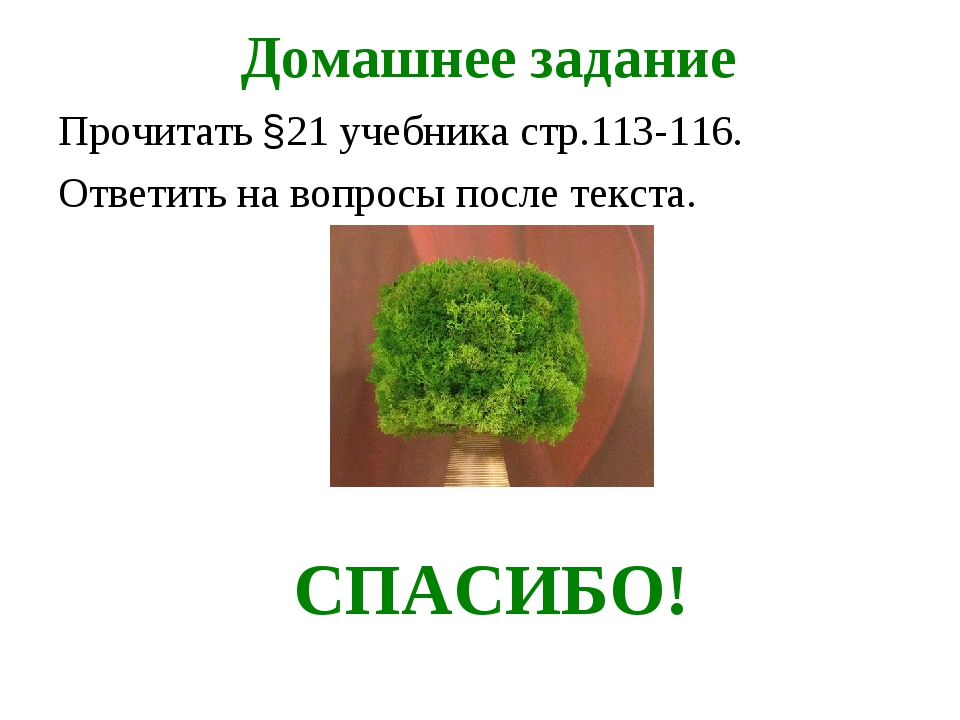 Домашнее задание Прочитать §21 учебника стр.113-116. Ответить на вопросы пос...