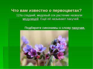 Что вам известно о первоцветах? 1)За сладкий, медовый сок растение назвали ме