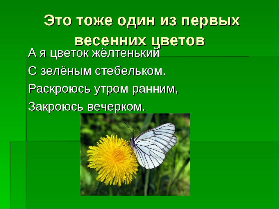 Это тоже один из первых весенних цветов А я цветок жёлтенький С зелёным стебе...