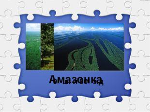 0⁰ ш. и 50⁰ з.д. Амазонка