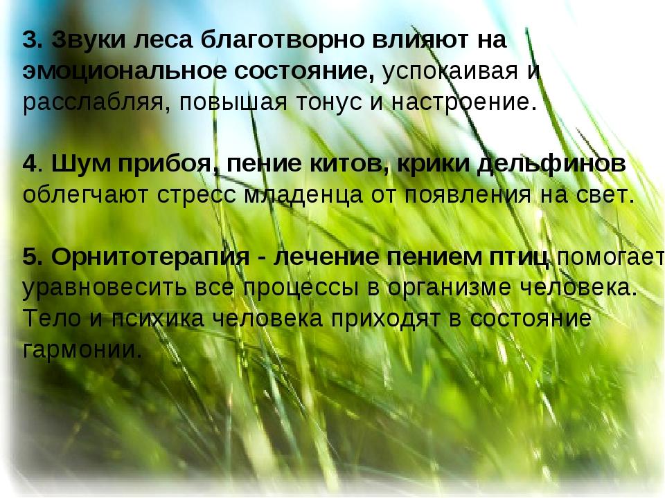 3. Звуки леса благотворно влияют на эмоциональное состояние, успокаивая и ра...