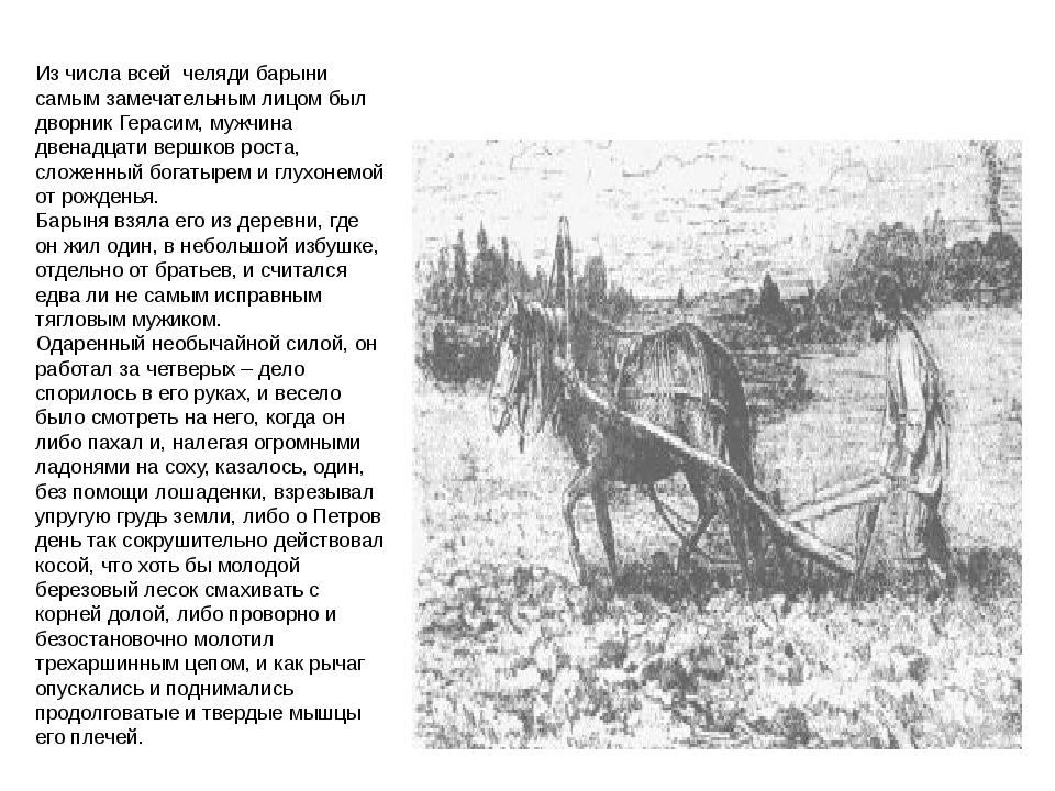 Из числа всей челяди барыни самым замечательным лицом был дворник Герасим, му...