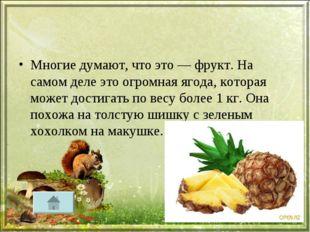 Многие думают, что это — фрукт. На самом деле это огромная ягода, которая мож