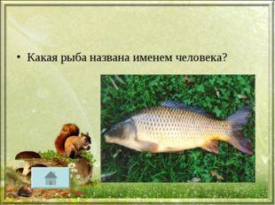Какая рыба названа именем человека?