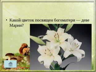 Какой цветок посвящен богоматери — деве Марии?