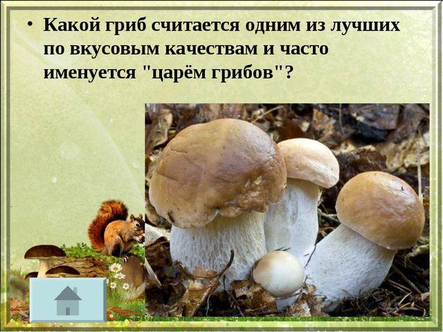 Какой гриб считается одним из лучших по вкусовым качествам и часто именуется...