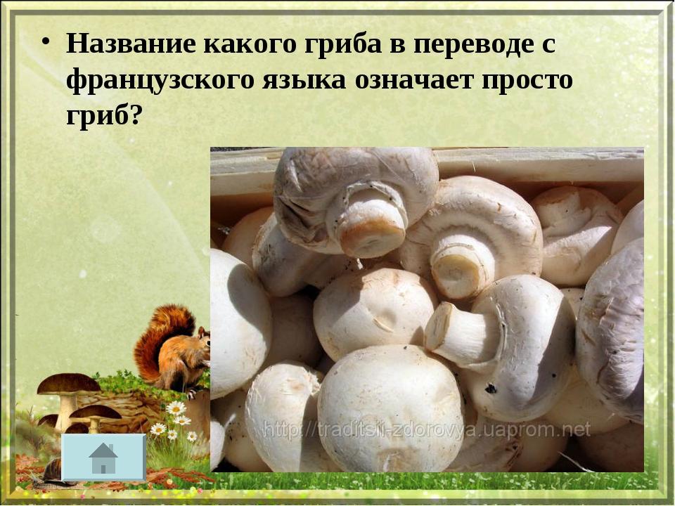 Название какого гриба в переводе с французского языка означает просто гриб?