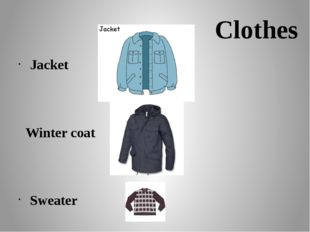 Сlothes Jacket Winter coat Sweater