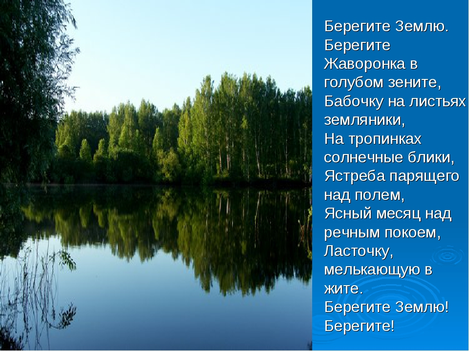 Берегите Землю. Берегите Жаворонка в голубом зените, Бабочку на листьях земл...