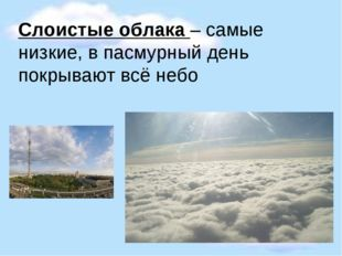 Слоистые облака – самые низкие, в пасмурный день покрывают всё небо