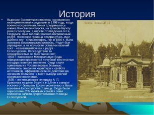 История Выросли Ессентуки из поселка, основанного екатерининскими солдатами в