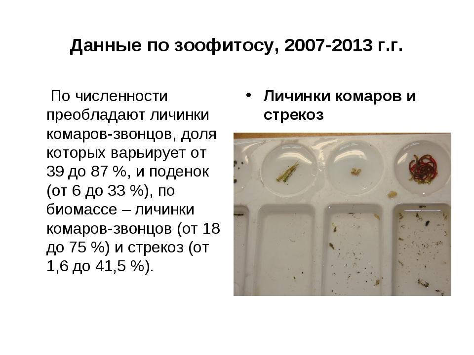 Данные по зоофитосу, 2007-2013 г.г. По численности преобладают личинки комаро...
