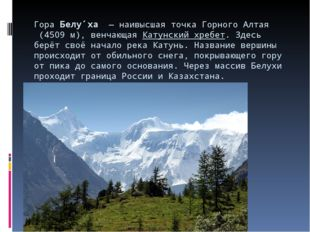 ГораБелу́ха— наивысшая точка ГорногоАлтая(4509 м), венчающаяКатунский х