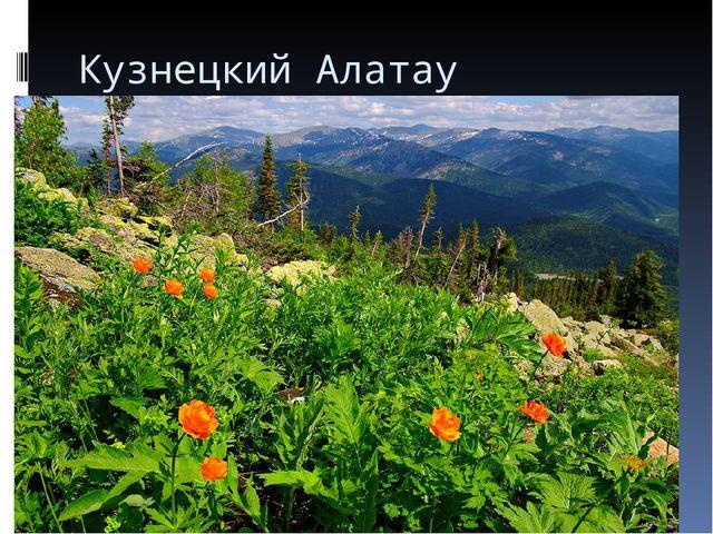 Кузнецкий Алатау