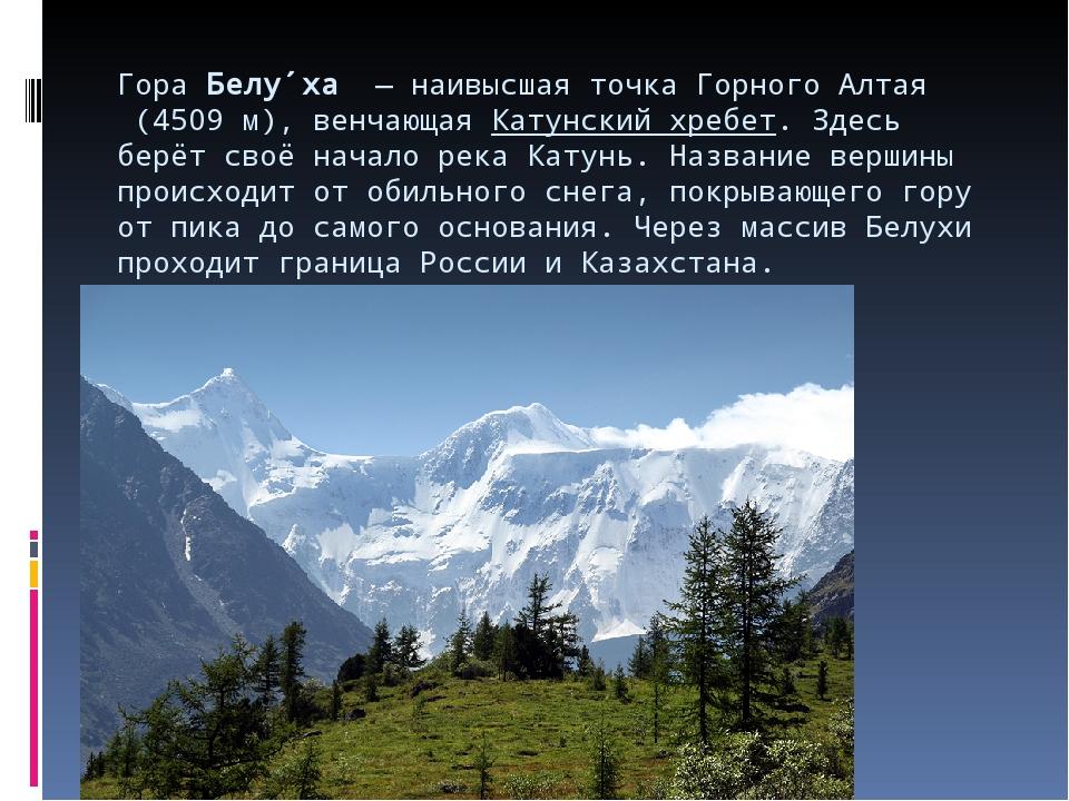 ГораБелу́ха— наивысшая точка ГорногоАлтая(4509 м), венчающаяКатунский х...