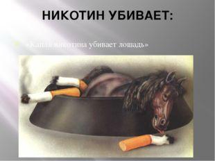 НИКОТИН УБИВАЕТ: «Капля никотина убивает лошадь»