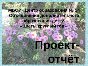 Проект-отчёт учащихся 5б класса Богачёвой Лолы, Гришиной Валерии, Костенец П