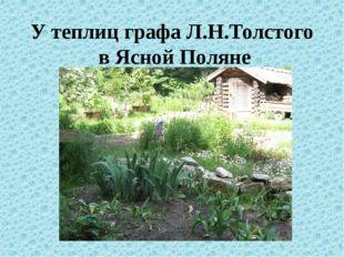 У теплиц графа Л.Н.Толстого в Ясной Поляне