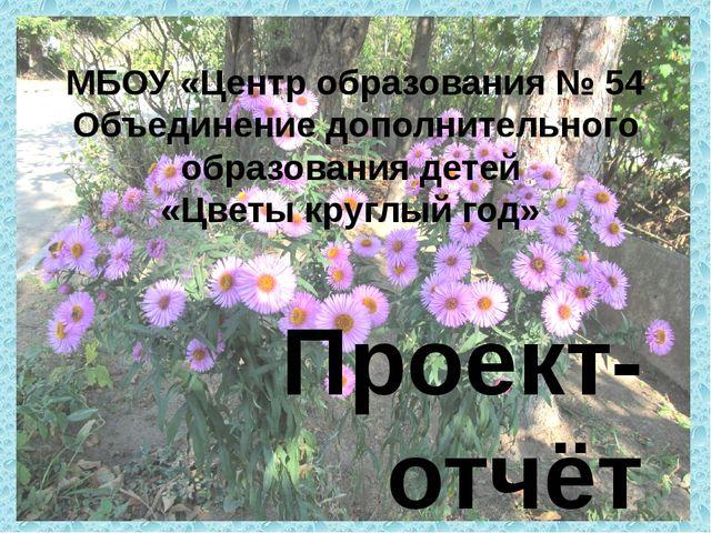 Проект-отчёт учащихся 5б класса Богачёвой Лолы, Гришиной Валерии, Костенец П...