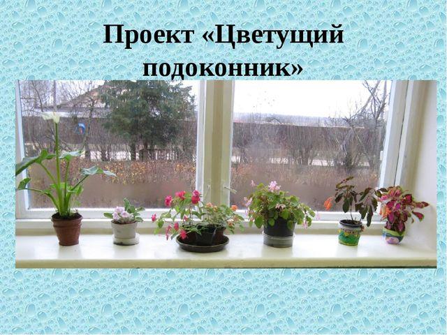 Проект «Цветущий подоконник»