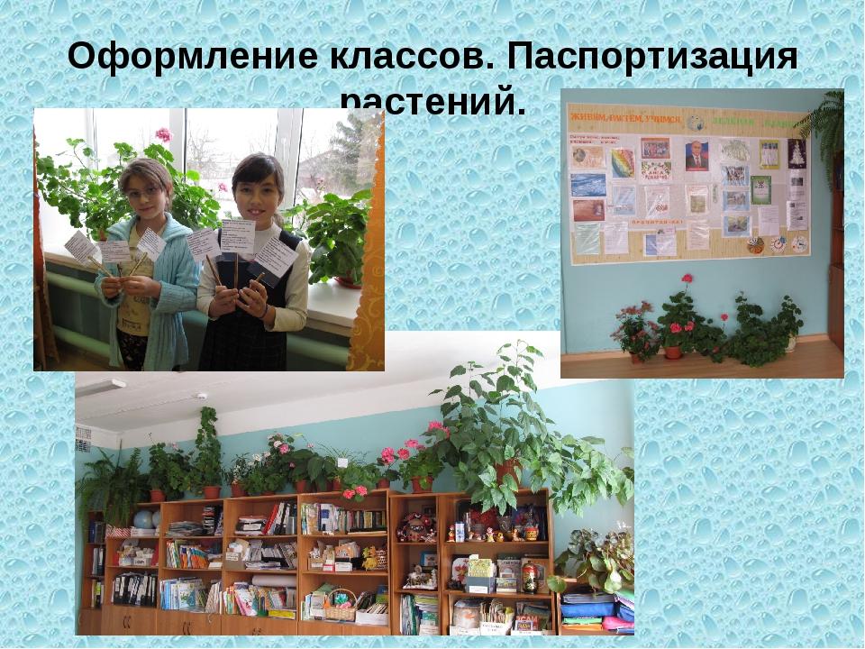 Оформление классов. Паспортизация растений.