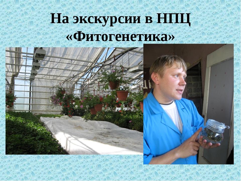На экскурсии в НПЦ «Фитогенетика»