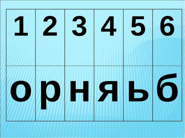 123456 орняьб