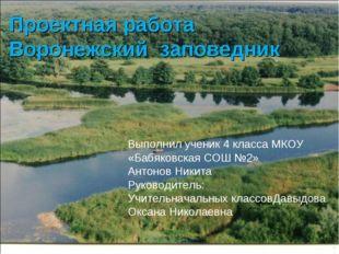 Проектная работа Воронежский заповедник Выполнил ученик 4 класса МКОУ «Бабяко