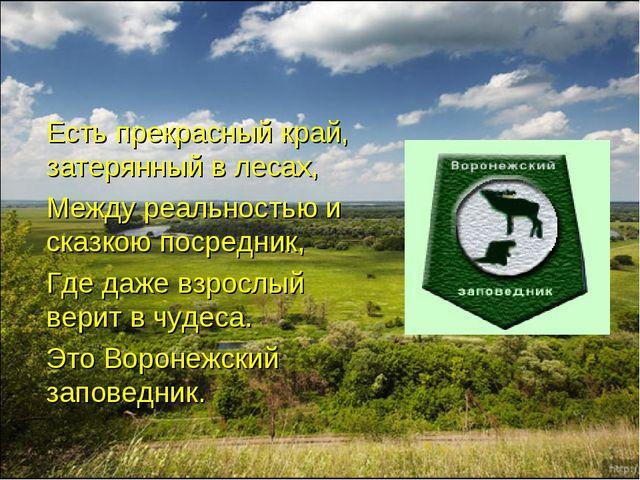 Есть прекрасный край, затерянный в лесах, Между реальностью и сказкою посред...