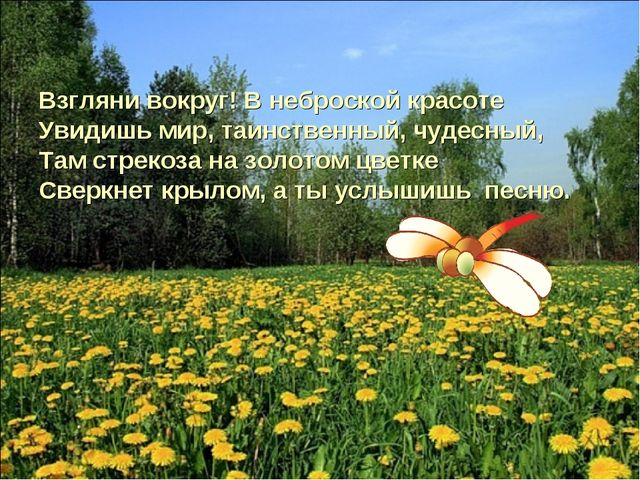 Взгляни вокруг! В неброской красоте Увидишь мир, таинственный, чудесный, Там...