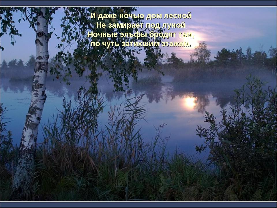 И даже ночью дом лесной Не замирает под луной Ночные эльфы бродят там, по чут...