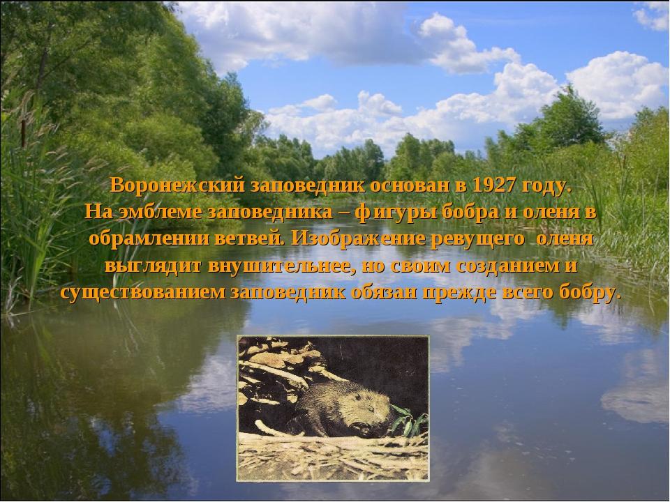 Воронежский заповедник основан в 1927 году. На эмблеме заповедника – фигуры б...