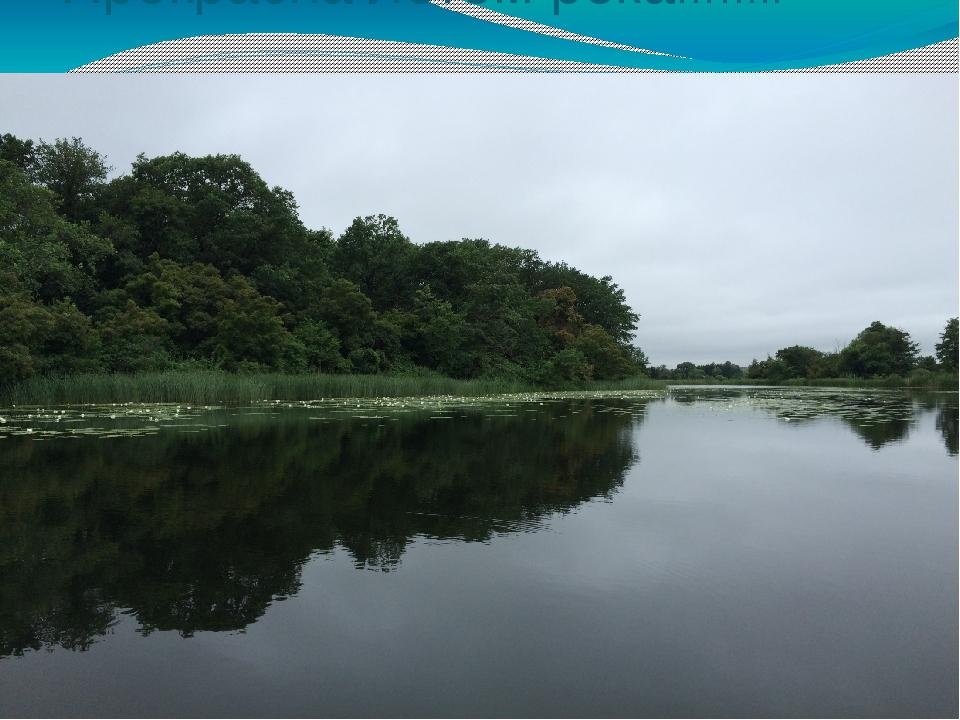 Прекрасна летом река……..