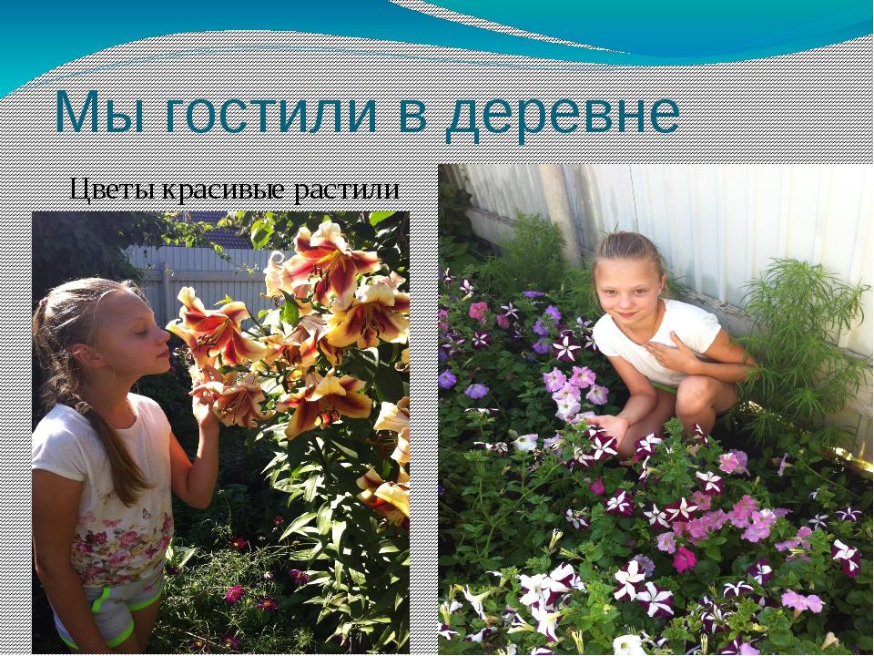 Мы гостили в деревне Цветы красивые растили