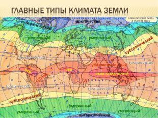 Приурочены к климатическим поясам – зонам, опоясывающим землю по окружности (