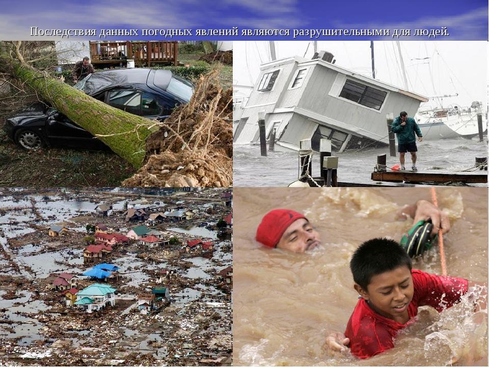 Последствия данных погодных явлений являются разрушительными для людей.