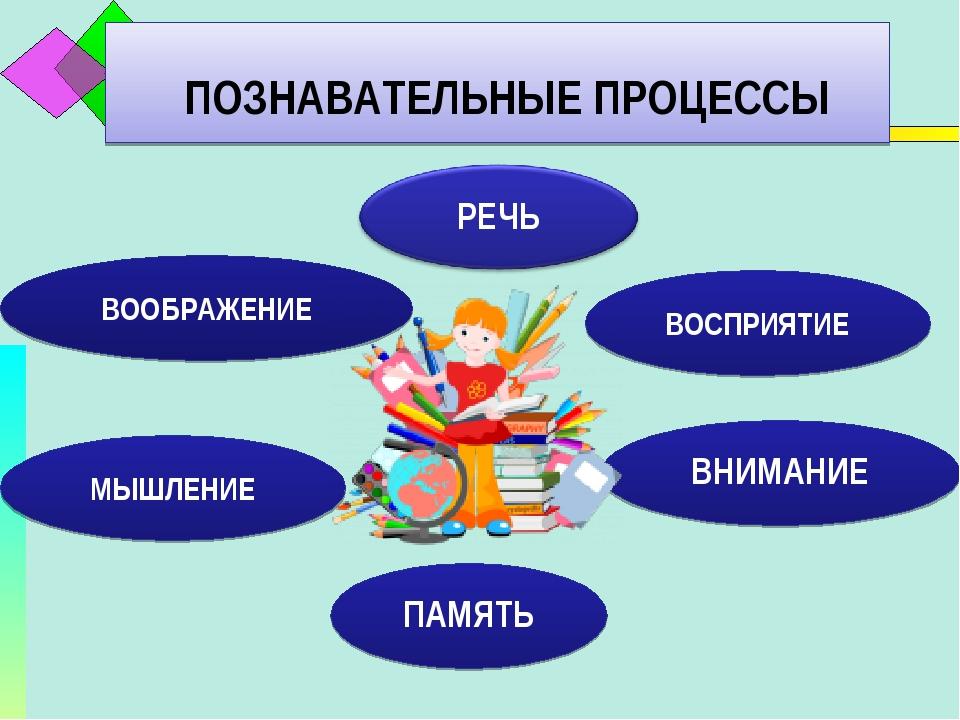 С какими познавательными процессами связано мышление