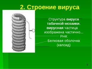 Структура вируса табачной мозаики. вирусная частица изображена частично... РН
