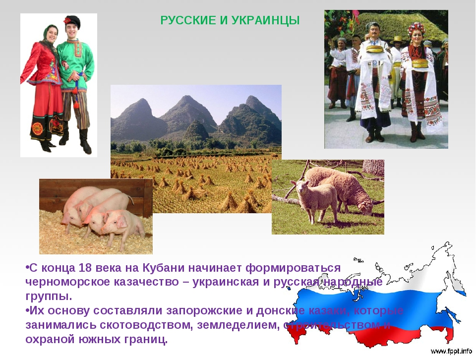 РУССКИЕ И УКРАИНЦЫ С конца 18 века на Кубани начинает формироваться черноморс...
