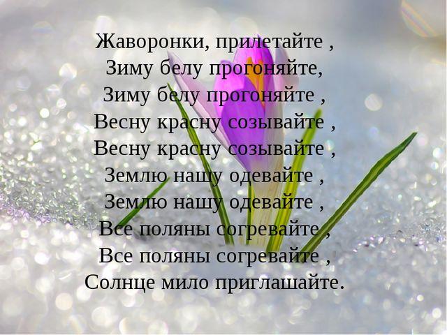 Жаворонки, прилетайте , Зиму белу прогоняйте, Зиму белу прогоняйте , Весну кр...