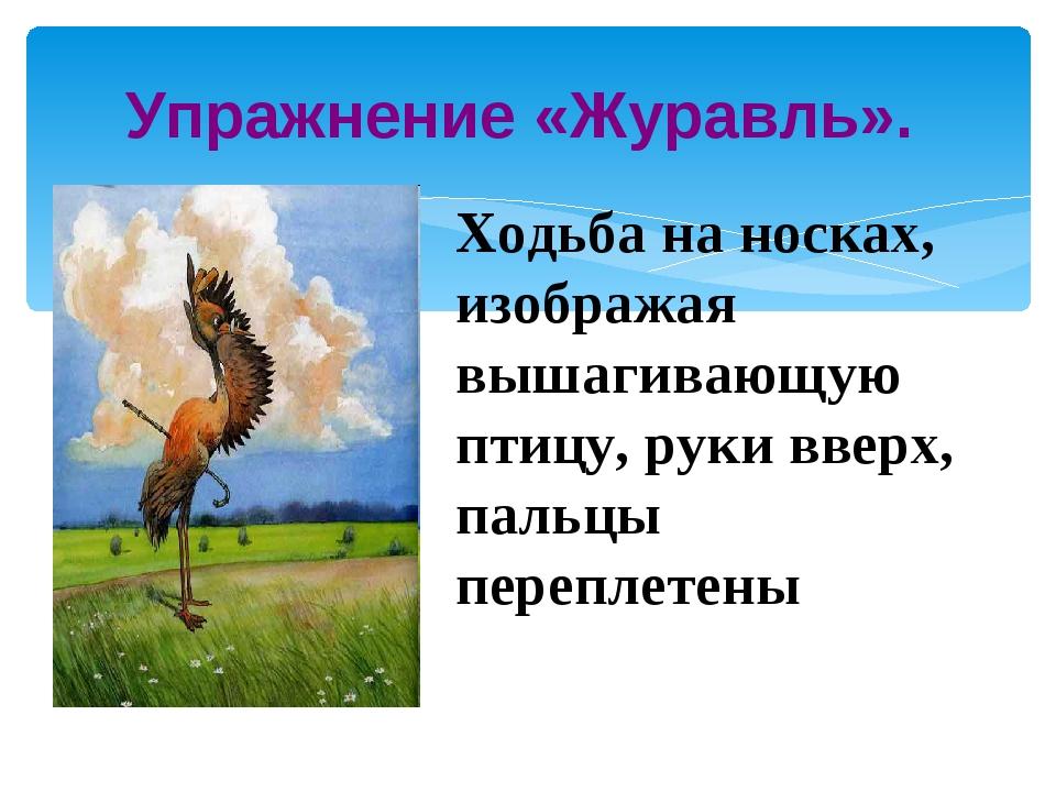 Упражнение «Журавль». Ходьба на носках, изображая вышагивающую птицу, руки вв...
