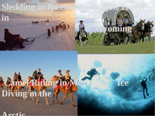 Sledding in Russia Wagon Travel in Wyoming Camel Riding in Morocco Ice Diving...