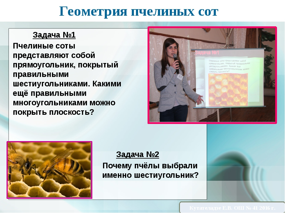 Геометрия пчелиных сот Задача №1 Пчелиные соты представляют собой прямоугольн...