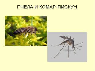 ПЧЕЛА И КОМАР-ПИСКУН