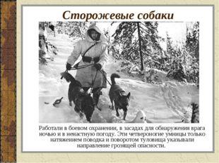 Сторожевые собаки Работали в боевом охранении, в засадах для обнаружения враг