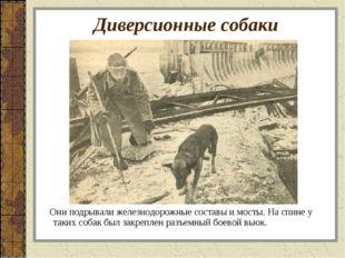 Диверсионные собаки Они подрывали железнодорожные составы и мосты. На спине у